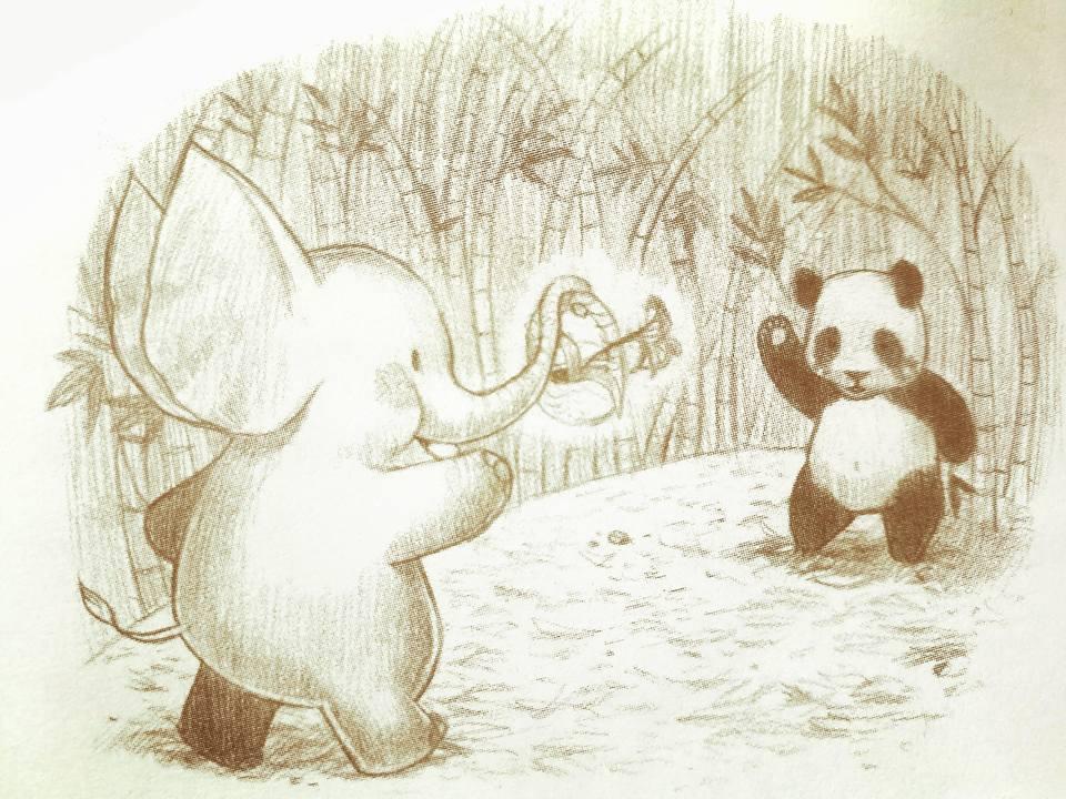 ช้างกับหมีแพนด้า