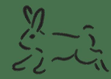 rabbit-2021026_960_720 (1)
