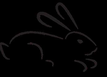 rabbit-2021026_960_720