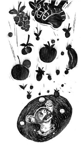 7) นกทิ้งผลไม้ลงไปใน หลุม (อาจใช้ไม่ได้เพราะมงกุฏหาย)