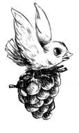 ปก) นก