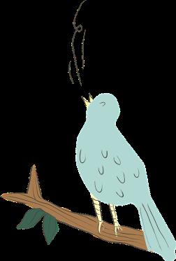 bird-616803_960_720